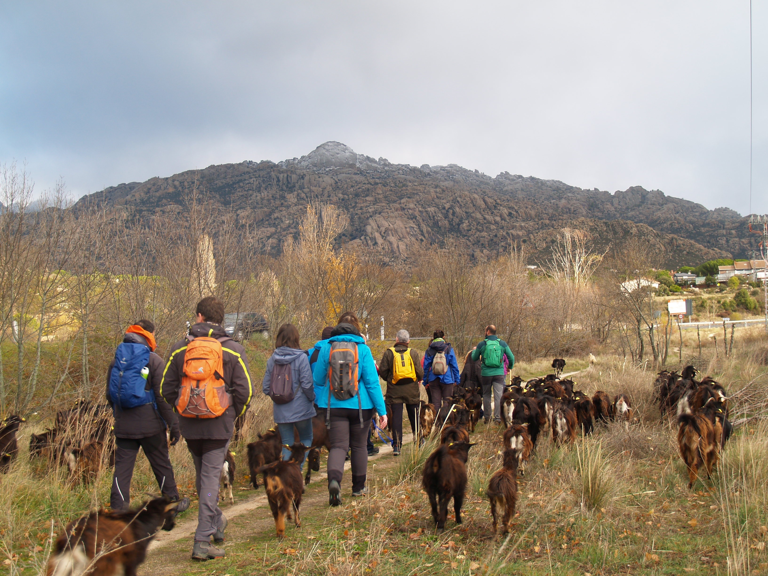 naturewatch Guadarrama 2019